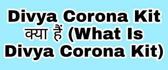 Divya Corona Kit क्या हैं (What Is Divya Corona Kit)